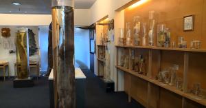 Interiér múzea