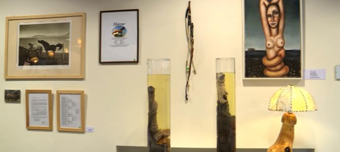 Zaujímavosti zo sveta: Múzeum penisov na Islande!